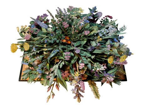 book sculptures by Kerry Miller: Wild Flowers of Great Britain - vol X